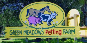 green-meadows-petting-farm