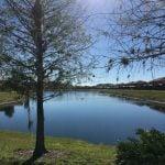 BellaVida Lakeview