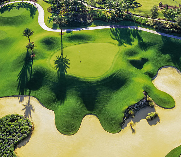 Image of Reunion golf course