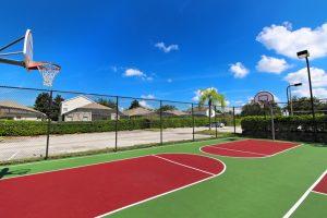 Windsor Palms basketball