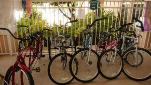 Windsor Palms bike rental